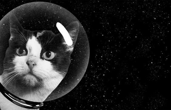 Bellissima nella sua bolla di vetro :)