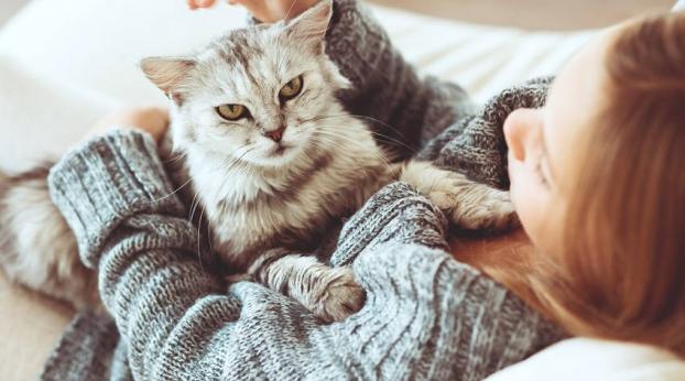 FUMO : i rischi per i tuoi animali