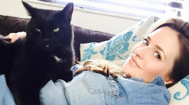 L'assurdo motivo per cui si crede che i gatti neri portano sfortuna ti farà perdere la fiducia ne...