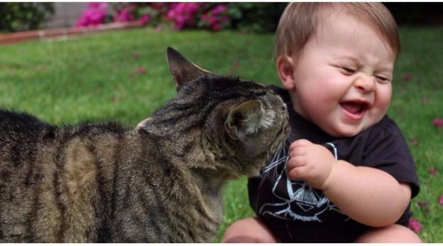 Ecco cosa succede quando un bambino cresce con un gatto